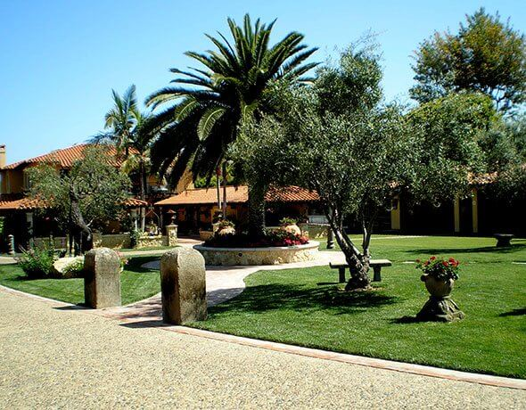 Residential Courtyard Landscaping in Vista, CA