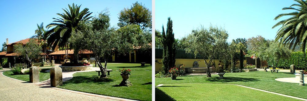 General Courtyard Landscaping